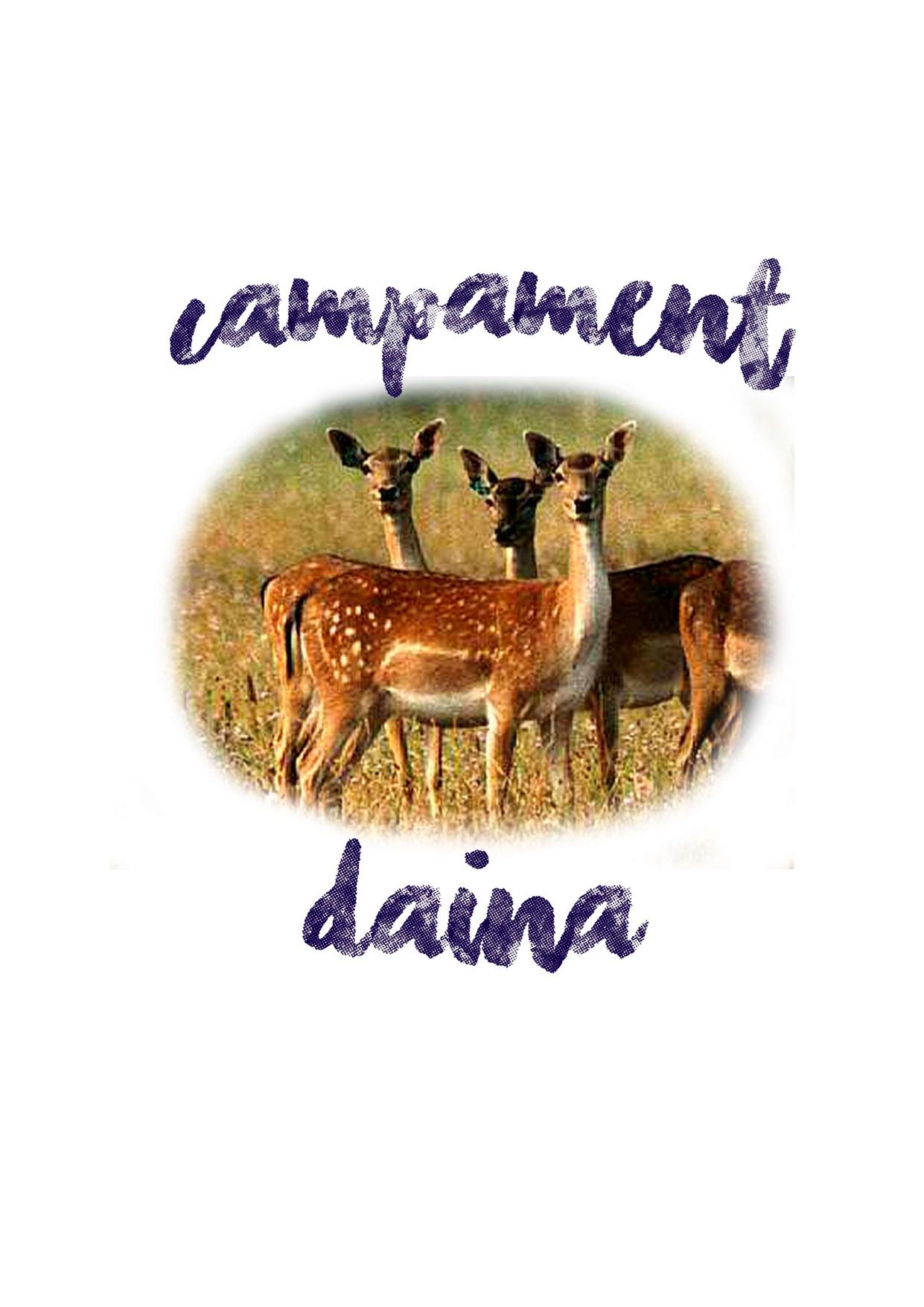 butllet-daina-2020